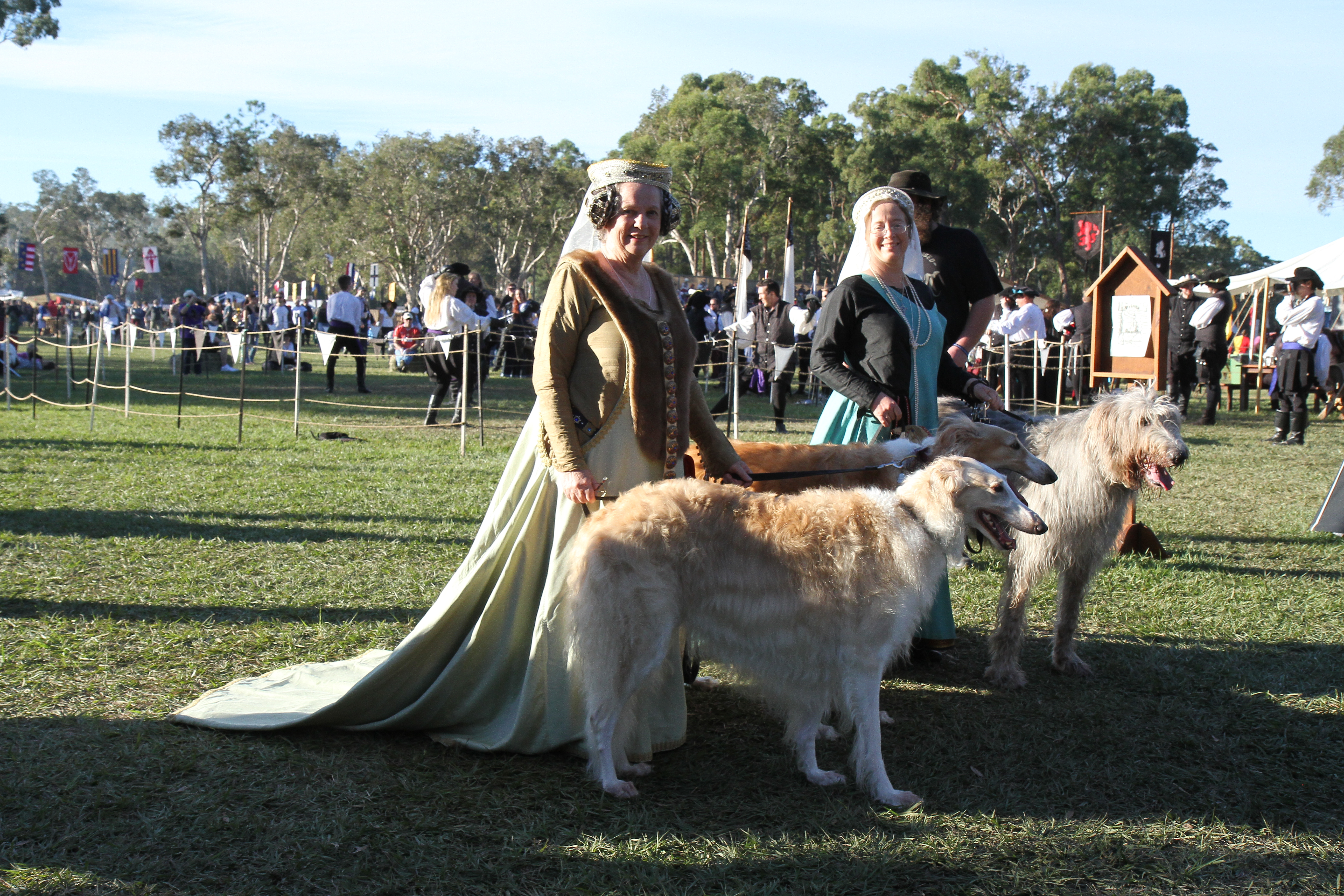 Medieval Animals Archives - Abbey Medieval Festival