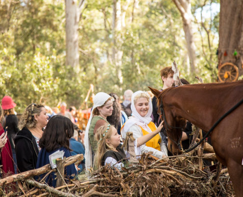 Patrons looking at a horse in a re-enactor encampment